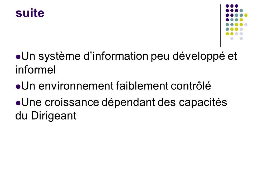 suite Un système d'information peu développé et informel