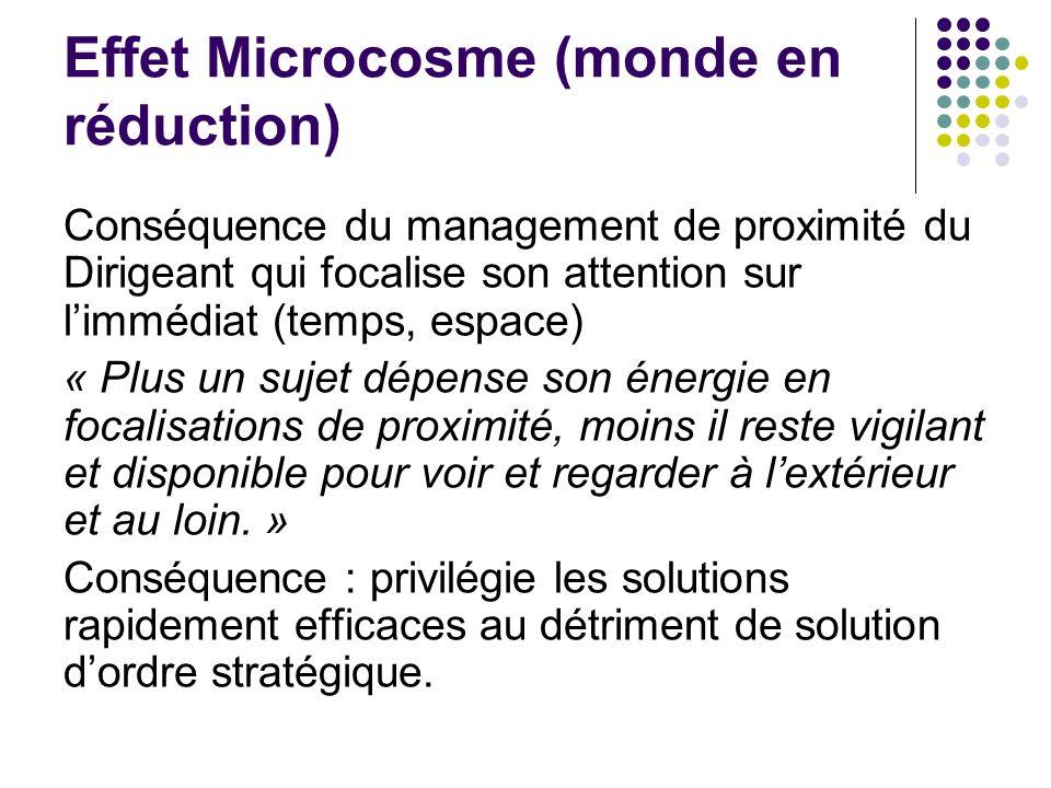 Effet Microcosme (monde en réduction)