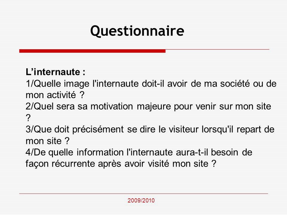 Questionnaire L'internaute :