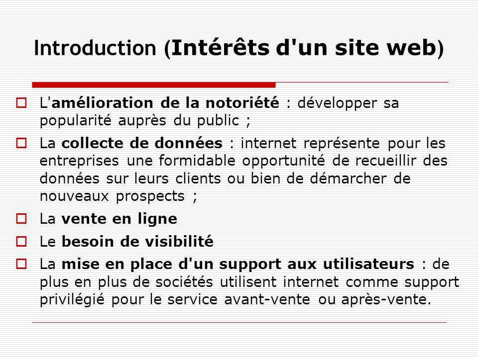 Introduction (Intérêts d un site web)