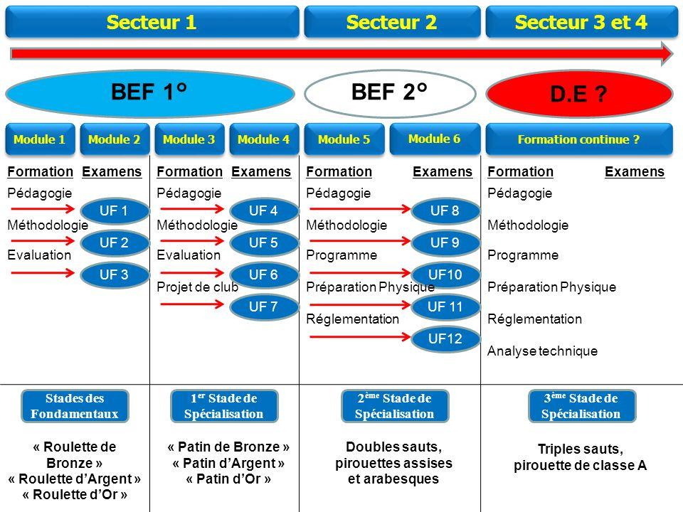 BEF 1° BEF 2° D.E Secteur 1 Secteur 2 Secteur 3 et 4 Formation