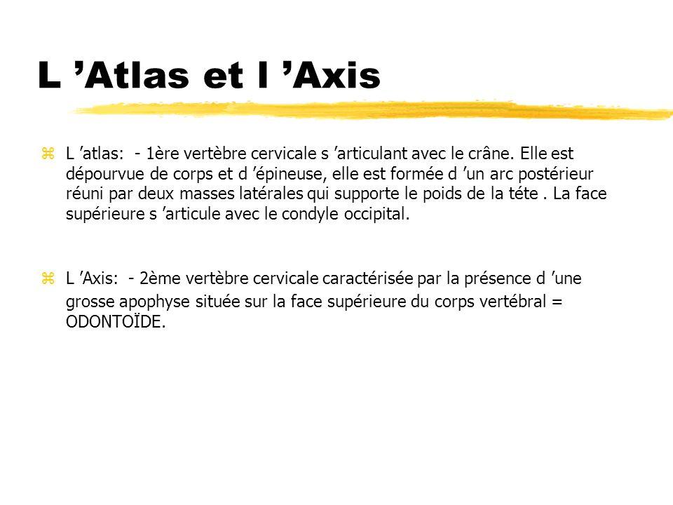L 'Atlas et l 'Axis