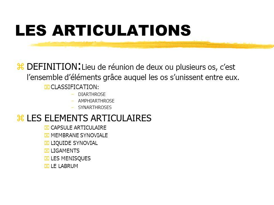 Les aspects physiologiques et anatomiques de l appareil for Definition de l