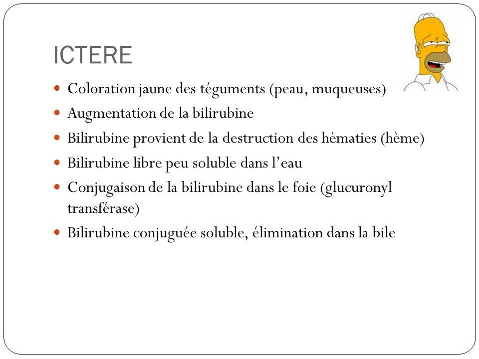 ICTERE Coloration jaune des téguments (peau, muqueuses)