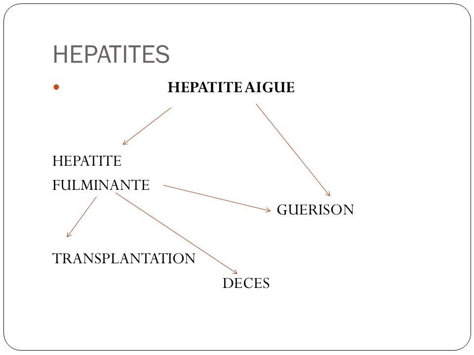 HEPATITES HEPATITE AIGUE HEPATITE FULMINANTE GUERISON TRANSPLANTATION
