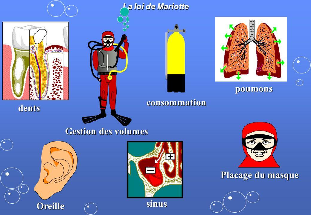 poumons consommation dents Gestion des volumes Placage du masque sinus