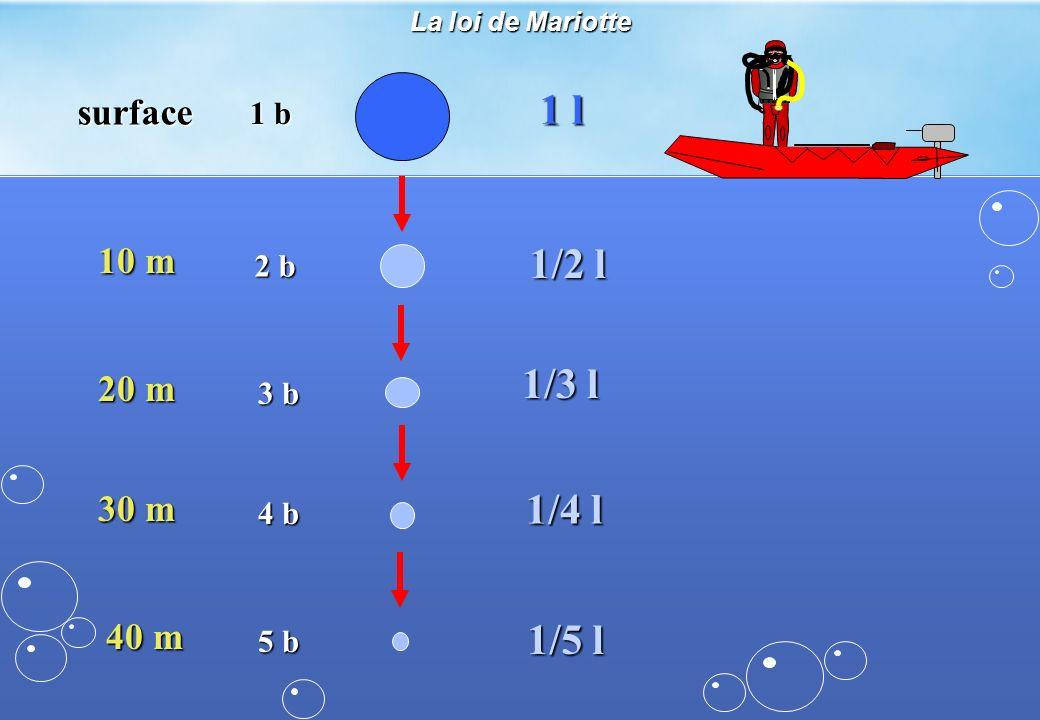 1 l 1/2 l 1/3 l 1/4 l 1/5 l surface 10 m 20 m 30 m 40 m 1 b 2 b 3 b