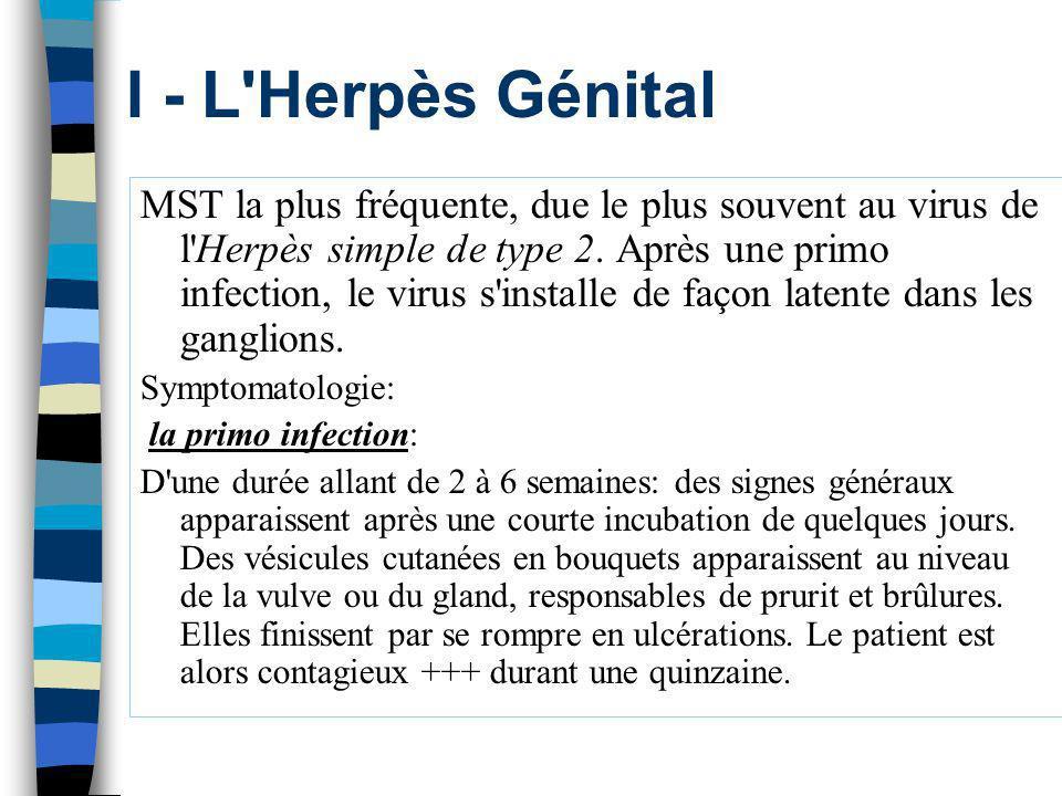 I - L Herpès Génital