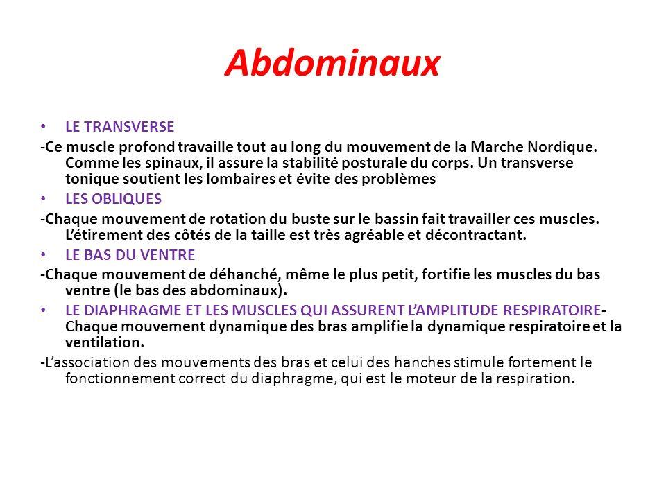 Abdominaux LE TRANSVERSE