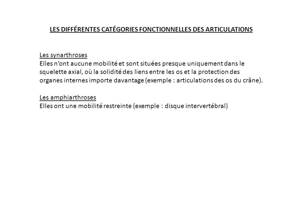 LES DIFFÉRENTES CATÉGORIES FONCTIONNELLES DES ARTICULATIONS