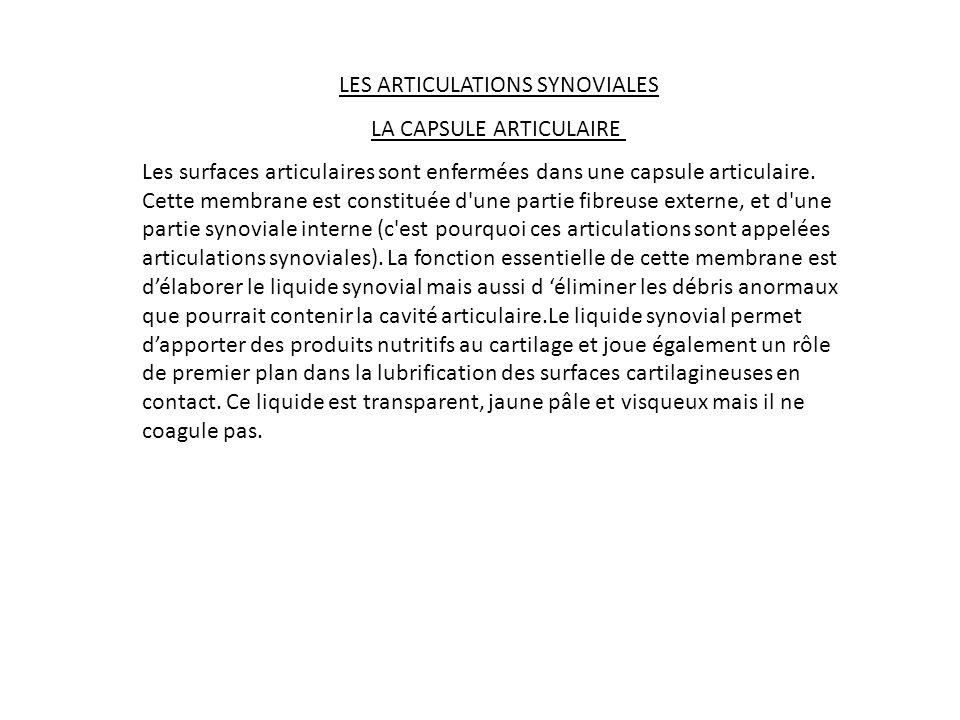 LES ARTICULATIONS SYNOVIALES LA CAPSULE ARTICULAIRE