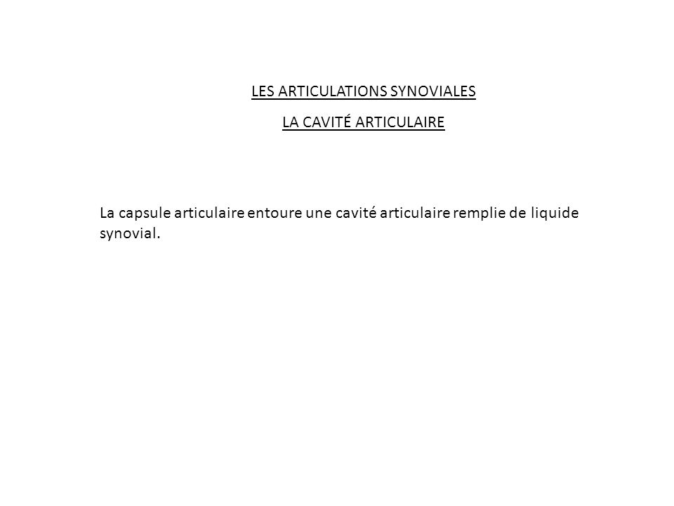 LES ARTICULATIONS SYNOVIALES