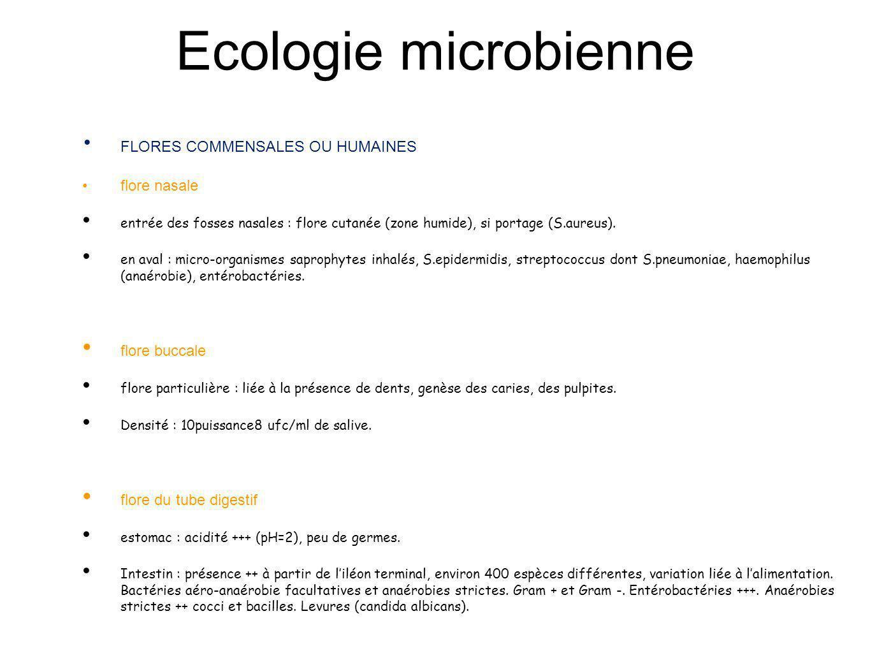 Ecologie microbienne FLORES COMMENSALES OU HUMAINES flore nasale