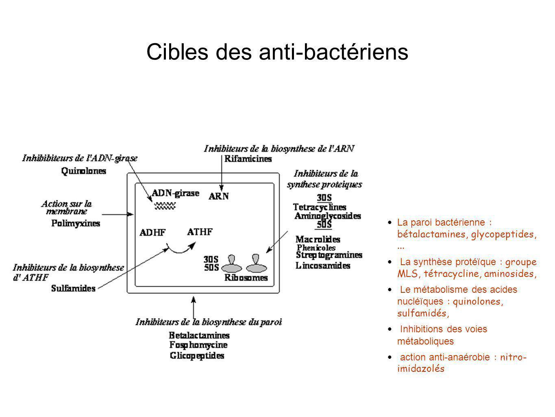 Cibles des anti-bactériens