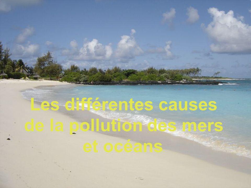 Les différentes causes de la pollution des mers