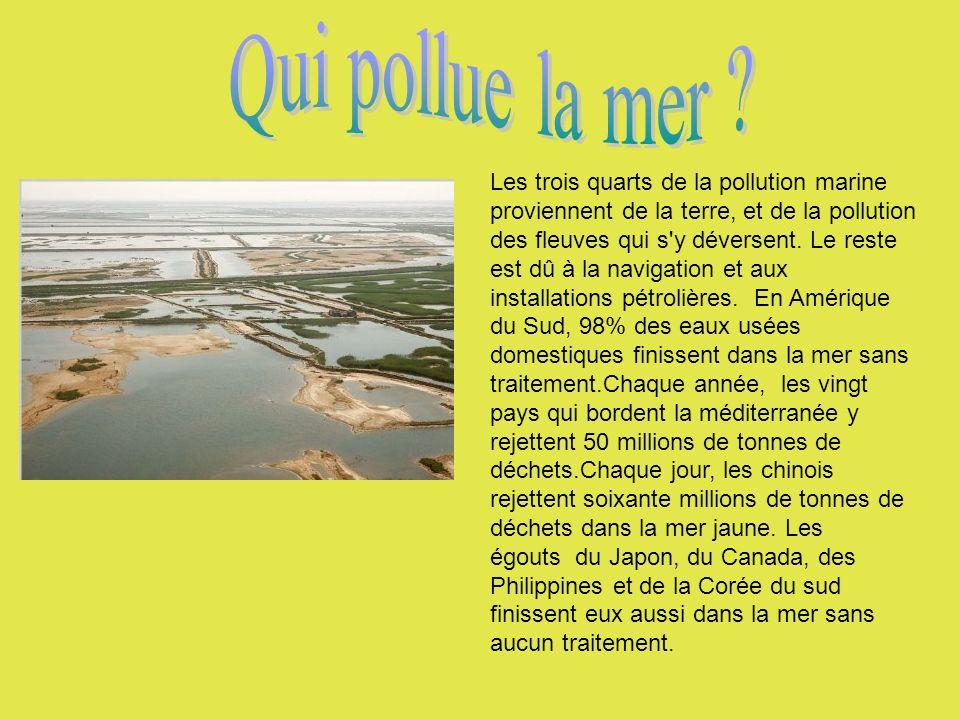 Qui pollue la mer