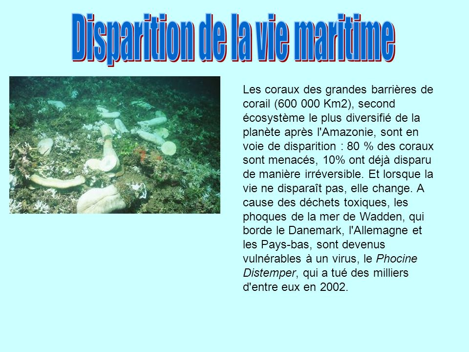 Disparition de la vie maritime