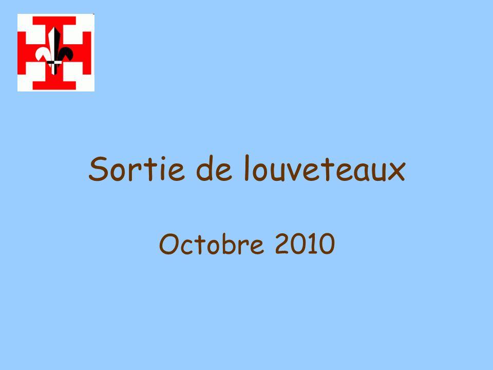 Sortie de louveteaux Octobre 2010