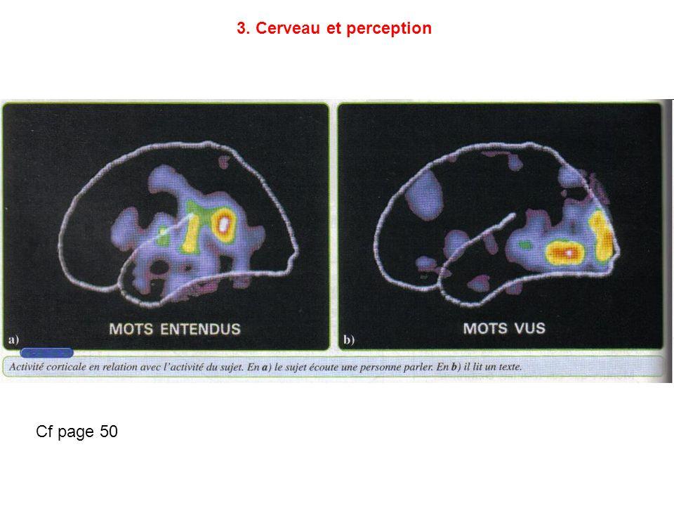 3. Cerveau et perception Cf page 50