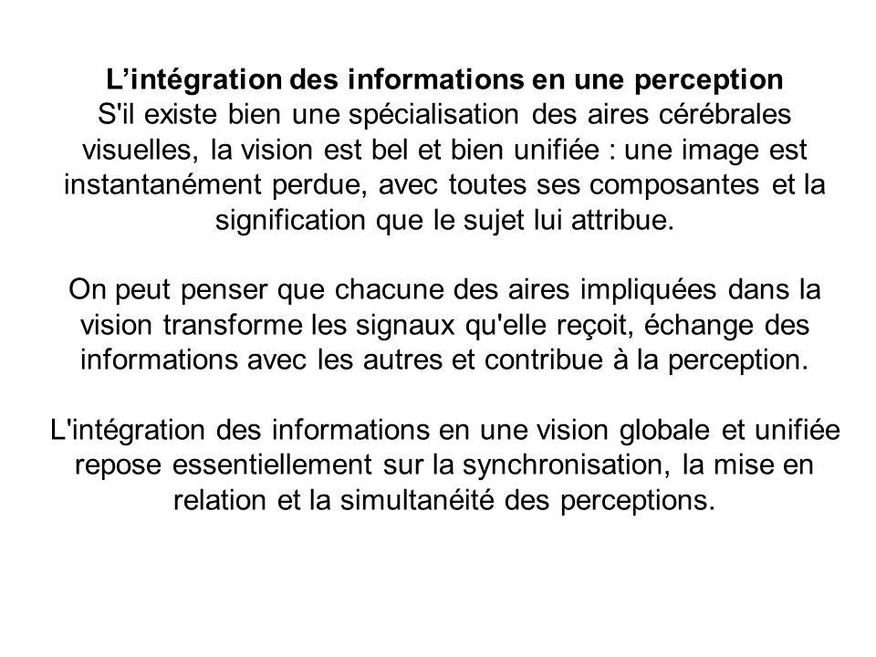 L'intégration des informations en une perception