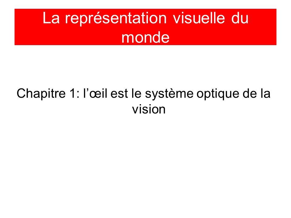 La représentation visuelle du monde