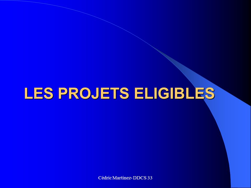 LES PROJETS ELIGIBLES Cédric Martinez- DDCS 33