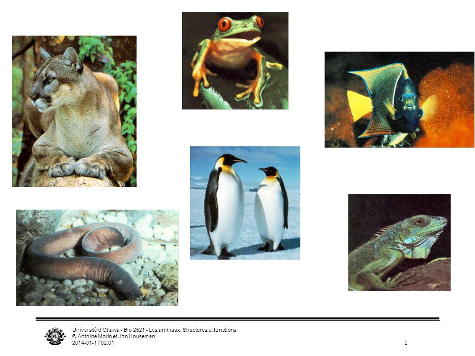 Université d'Ottawa - Bio 2521 - Les animaux: Structures et fonctions