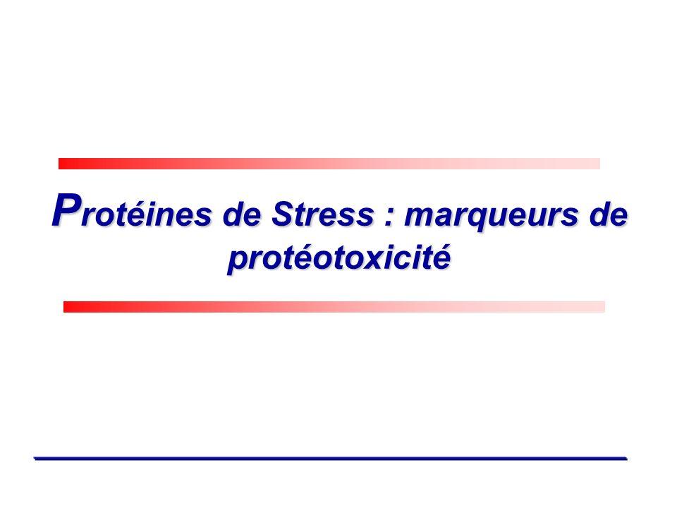 Protéines de Stress : marqueurs de protéotoxicité