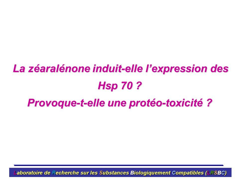 Provoque-t-elle une protéo-toxicité