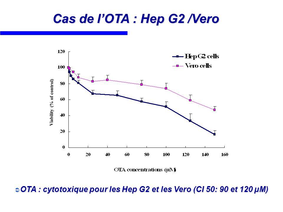 Cas de l'OTA : Hep G2 /Vero