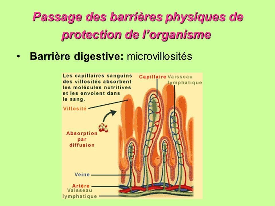 Passage des barrières physiques de protection de l'organisme