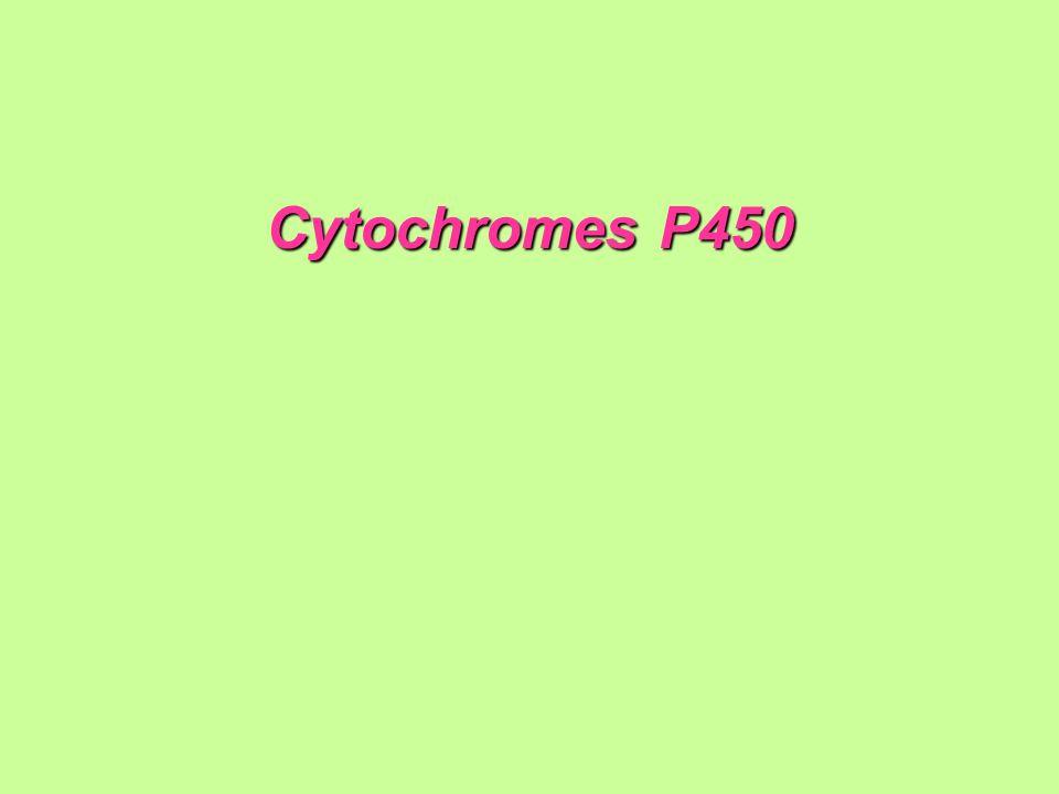 Cytochromes P450