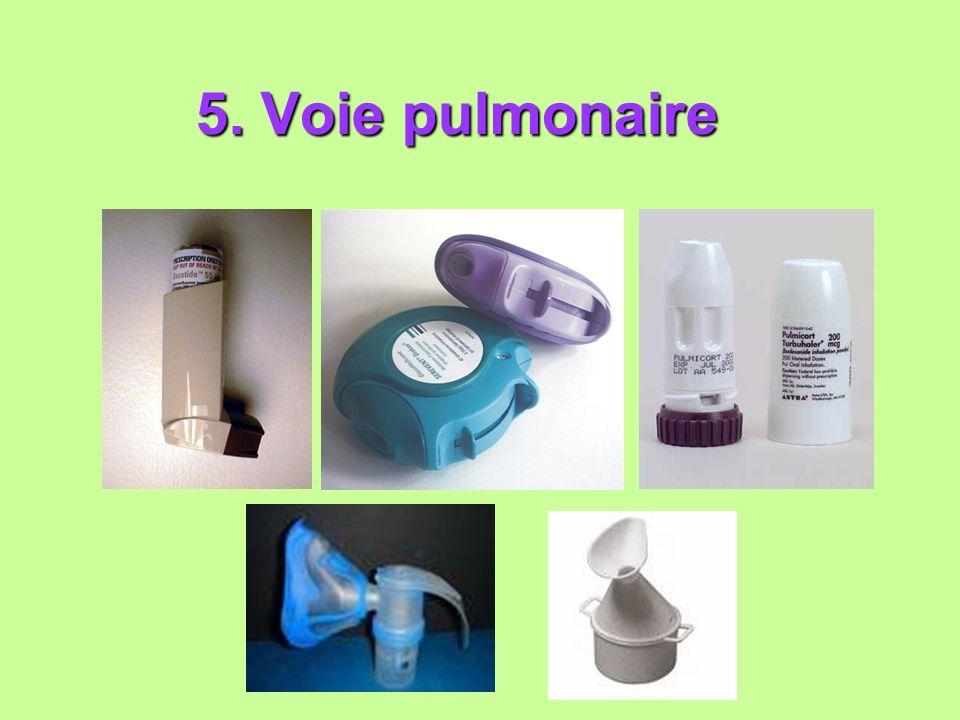 5. Voie pulmonaire