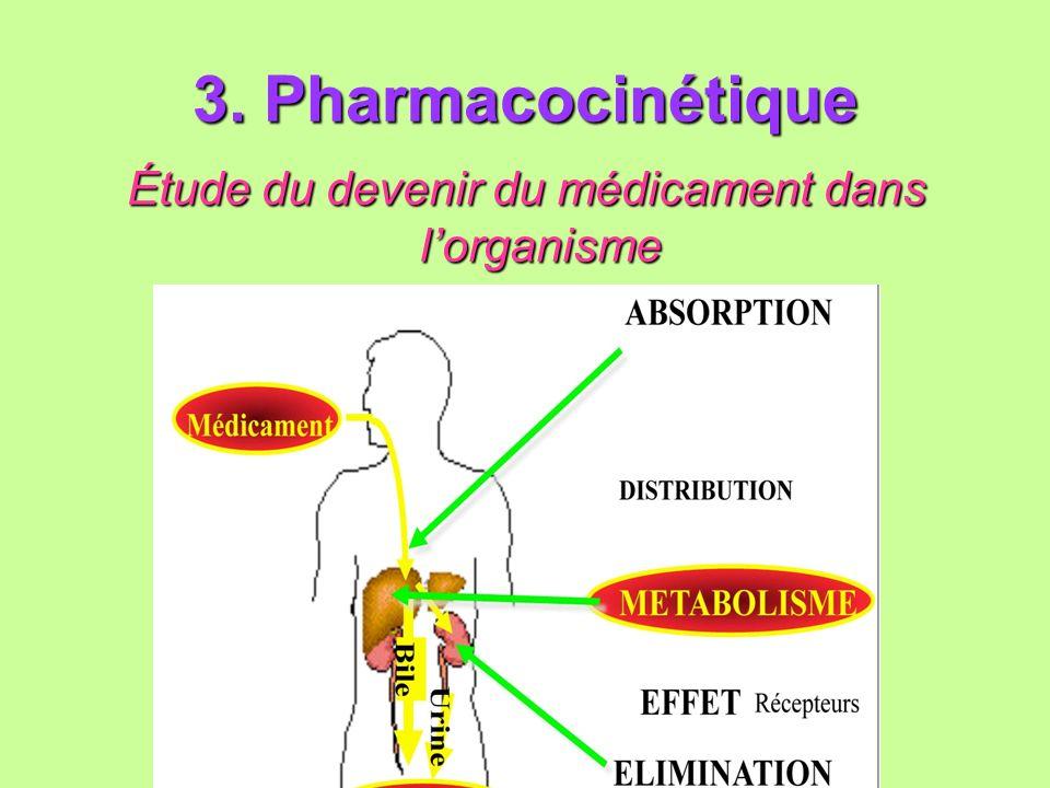 Étude du devenir du médicament dans l'organisme