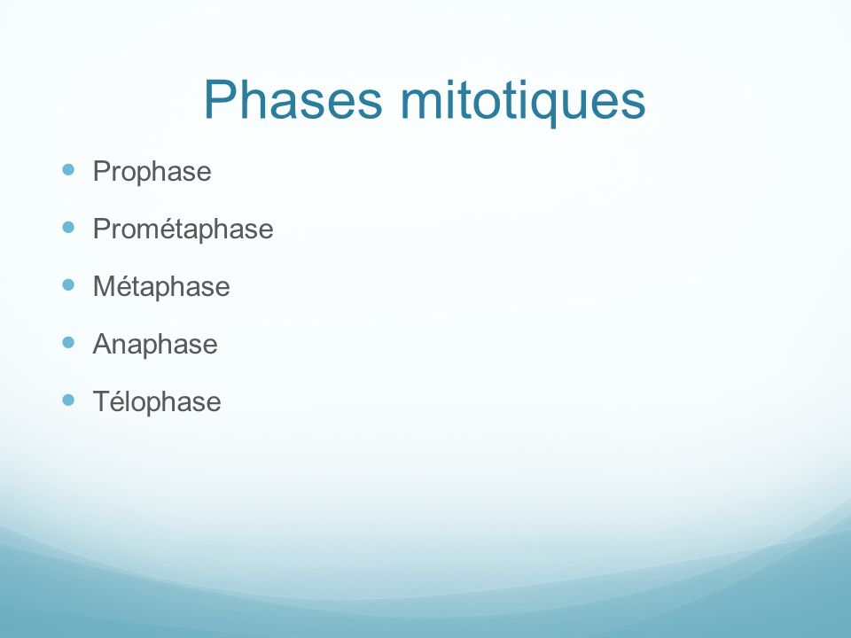 Phases mitotiques Prophase Prométaphase Métaphase Anaphase Télophase