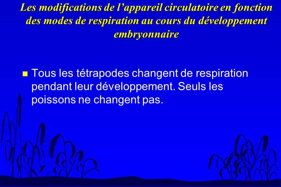 Les modifications de l'appareil circulatoire en fonction des modes de respiration au cours du développement embryonnaire