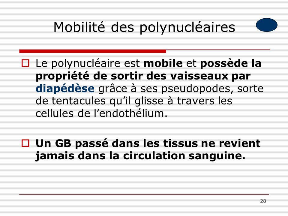 Mobilité des polynucléaires