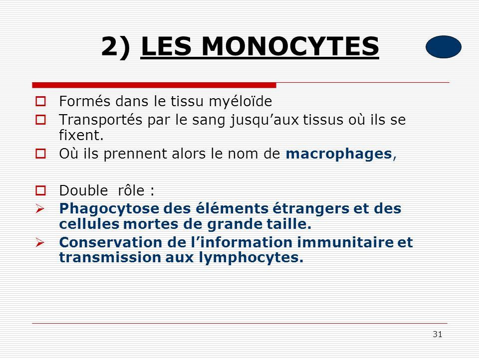 2) LES MONOCYTES Formés dans le tissu myéloïde