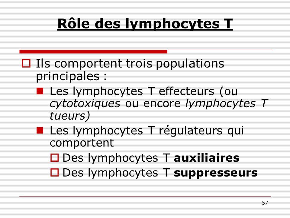 Rôle des lymphocytes T Ils comportent trois populations principales :