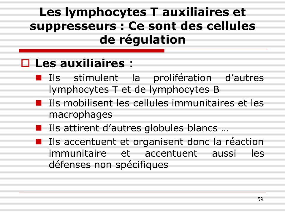 Les lymphocytes T auxiliaires et suppresseurs : Ce sont des cellules de régulation