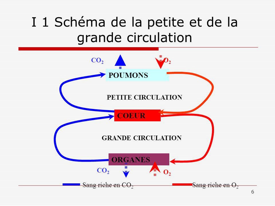 I 1 Schéma de la petite et de la grande circulation