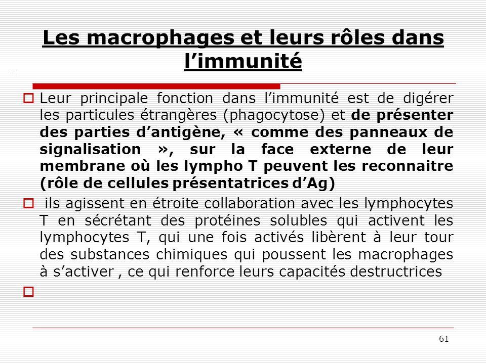 Les macrophages et leurs rôles dans l'immunité