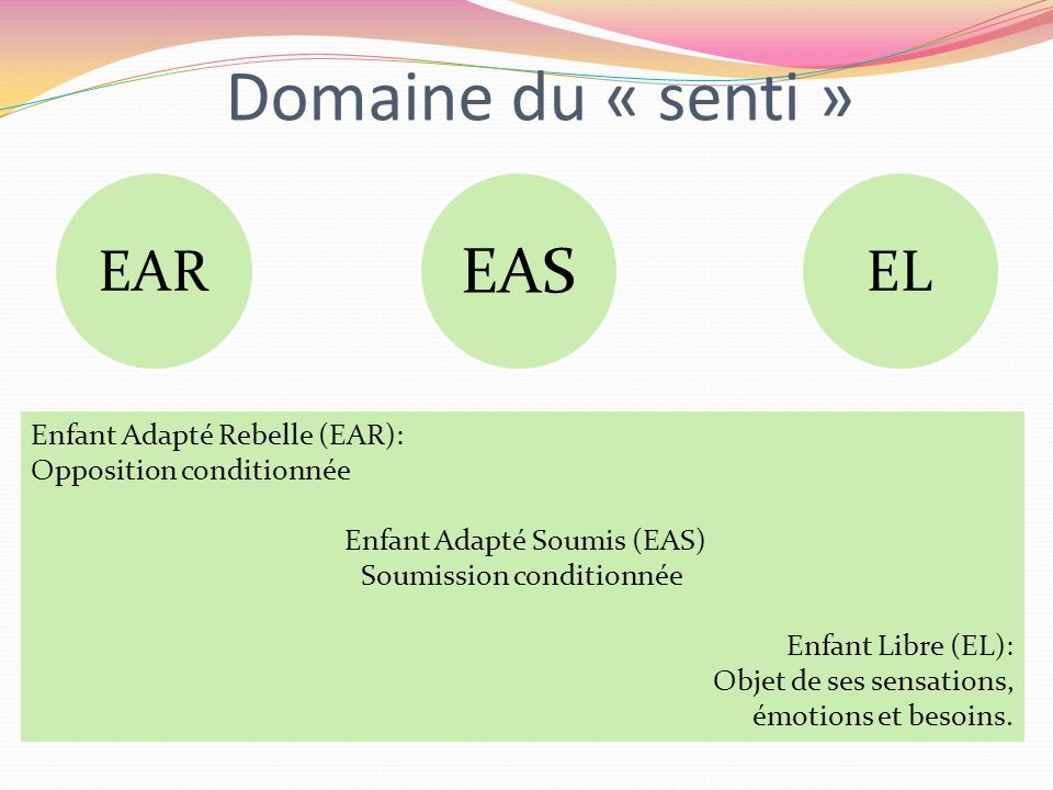Domaine du « senti » EAS EAR EL Enfant Adapté Rebelle (EAR):