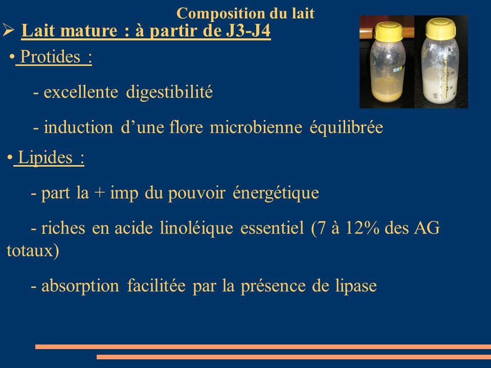 Lait mature : à partir de J3-J4 Protides : - excellente digestibilité