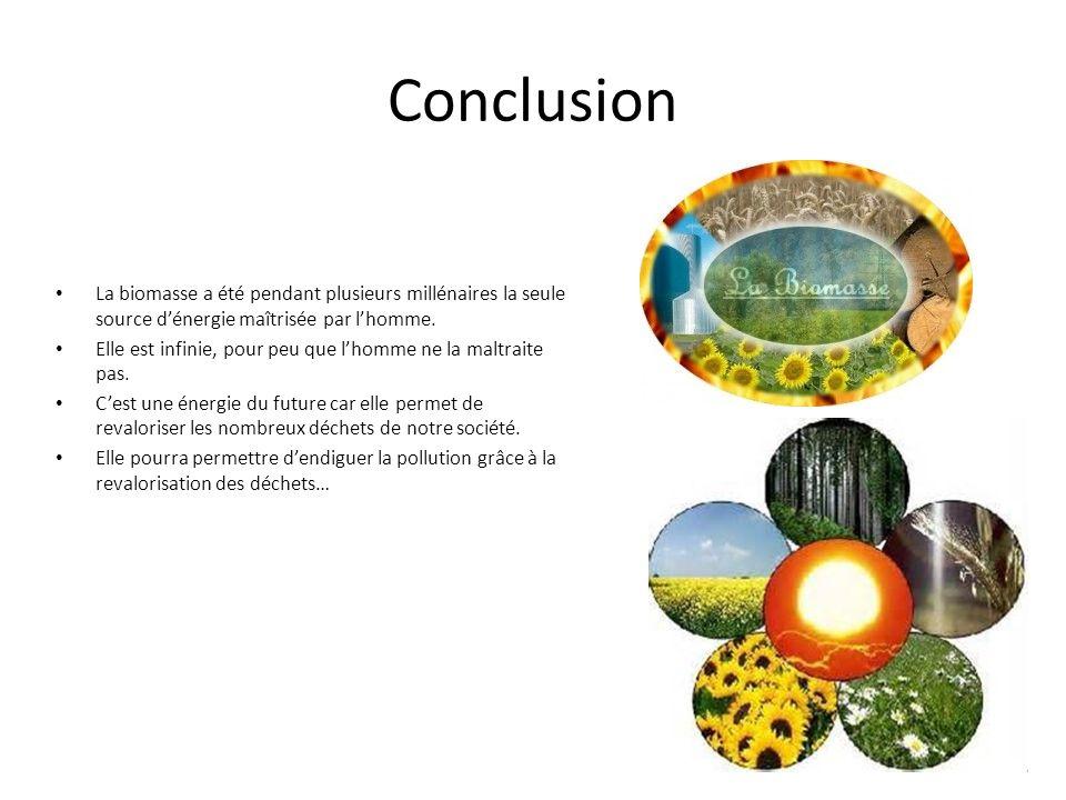 Conclusion La biomasse a été pendant plusieurs millénaires la seule source d'énergie maîtrisée par l'homme.