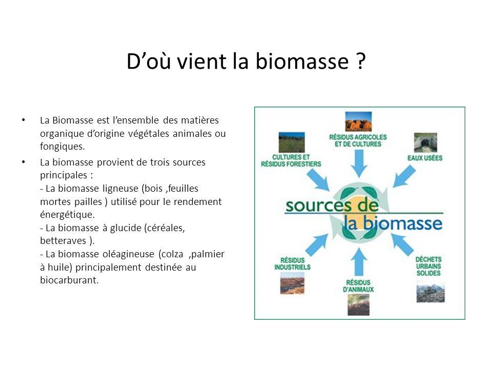 D'où vient la biomasse La Biomasse est l'ensemble des matières organique d'origine végétales animales ou fongiques.