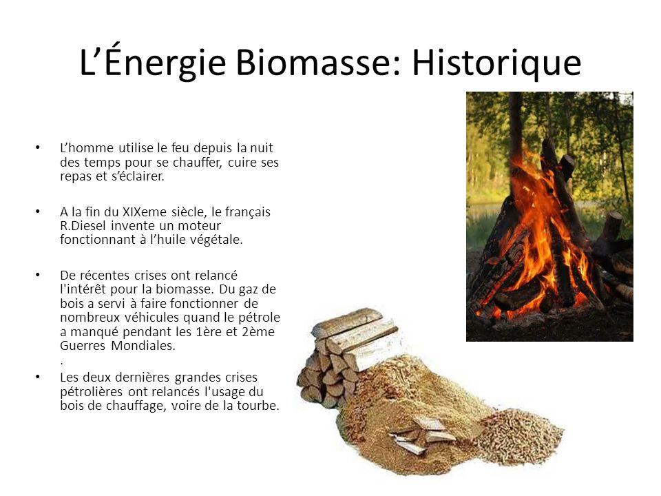 L'Énergie Biomasse: Historique