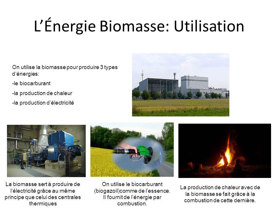 L'Énergie Biomasse: Utilisation