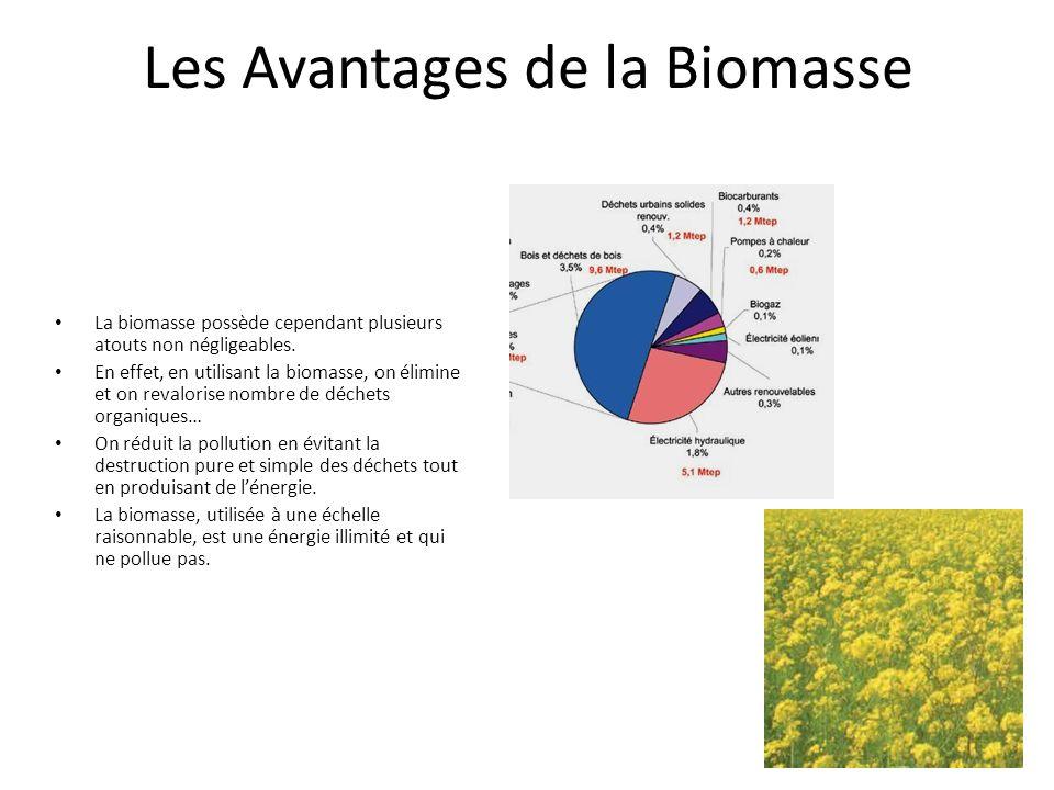 Les Avantages de la Biomasse