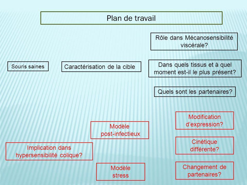Plan de travail Rôle dans Mécanosensibilité viscérale